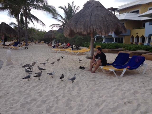Ben and gulls